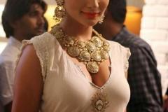 Actress-Amy-Jackson-Picture-Photos-Stills-13