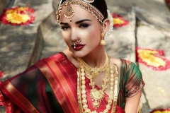 amy-jackson-photoshoot-in-bridal-saree_1421911070130