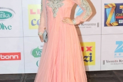Elli-Avram-at-Zee-Cine-Awards-2014-(1)3113