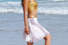 ileana d'cruz high resolution wallpapers (19)