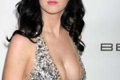 Katy-Perry-Hot-wallpaper-11