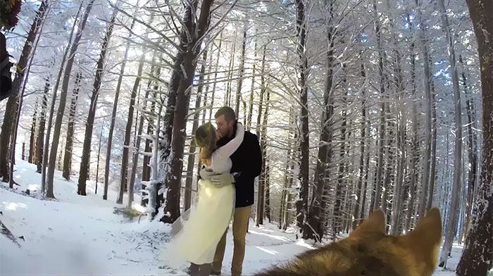Couple Lets Their Dog Film Their Wedding And The Result Is Better Than Most Wedding Videos