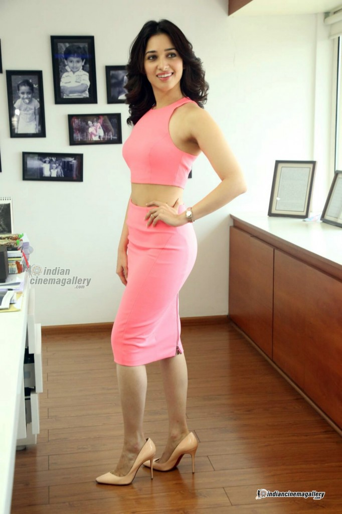 tamanna-bhatia-in-pink-dress-march-2016-pics-229919